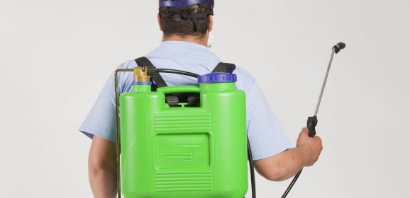 What are the Roles of Exterminators Pasadena?