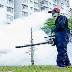 Using Lawn Pest Control Services in Wellington, Florida To Eliminate A Flea Problem