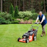 Yard Maintenance Steps That Include Pruning Trees, Eliminating Weeds And Cutting Grass