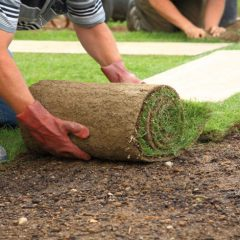Services Offered by Residential Landscaper in Prescott Valley, AZ