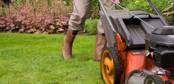 Why You Should Consider Hiring Lawn Care Companies in New Caanan CT