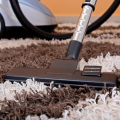 How Should You Naturally Clean Carpet Between Professional Cleaning Visits?