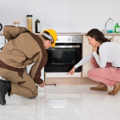 When Should a Homeowner Consider Mosquito Treatment in the Detroit, MI, Area?
